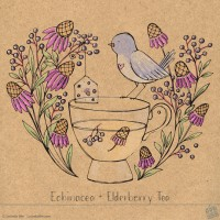 Tea With Friends: Echinacea